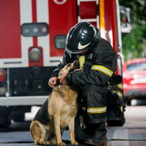 Rettung von Leben